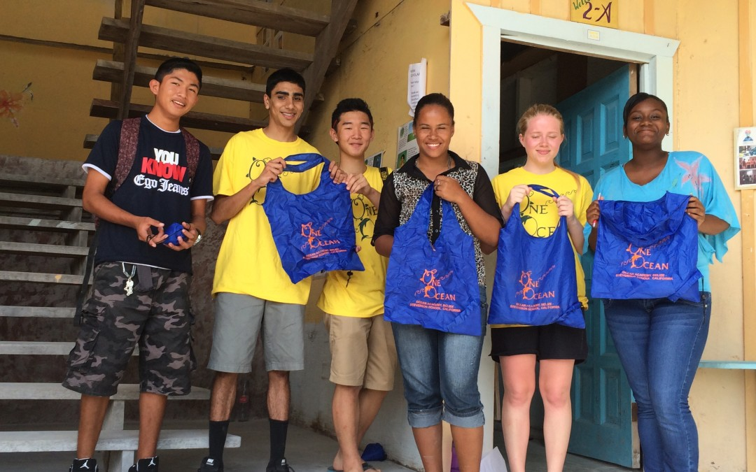 Ocean Guardian School Grant for Reusable Shopping Bag Project